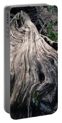 Tree Stump Portable Battery Charger