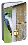 Tree Swallow At Nesting Box Portable Battery Charger