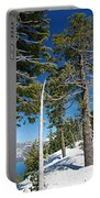 Trees And Snag At Crater Lake Portable Battery Charger