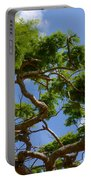 Trees In Bermuda Portable Battery Charger