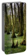 Trees In The Swamp Portable Battery Charger