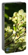 Trees Landscape Art Sunlit White Dogwood Flowers Baslee Troutman Portable Battery Charger