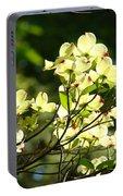 Trees Landscape Art Sunlit White Dogwood Flowers Baslee Troutman Portable Battery Charger