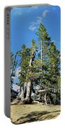 Trees On The Edge 1 Portable Battery Charger