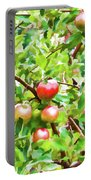 Trees With Red Apples In An Orchard Portable Battery Charger