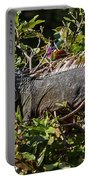 Treetop Iguana Portable Battery Charger