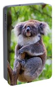 Treetop Koala Portable Battery Charger