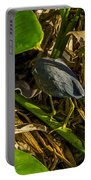 Tri-color Heron 5 Portable Battery Charger