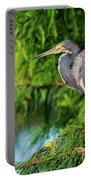 Tri-colored Heron At Sunset  Portable Battery Charger