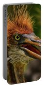 Tri Colored Heron Chick Portable Battery Charger
