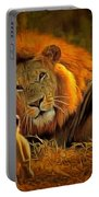 Tribute To Cecil Portable Battery Charger