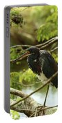 Tricolored At Rest  Portable Battery Charger