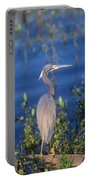 Tricolored Heron In Monet Like Setting Portable Battery Charger
