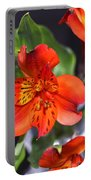 Trio Of Alstroemeria Inca Flowers-4 Portable Battery Charger