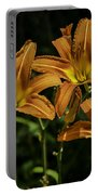 Trio Of Orange Tiger Lilies Portable Battery Charger