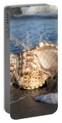 Triton Shell  Portable Battery Charger