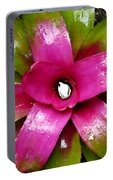 Tropic Wonder Portable Battery Charger