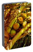 Tropical Dreams 1 Portable Battery Charger