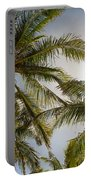 Tropical Sun Portable Battery Charger