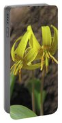 Trout Lily 1068 Portable Battery Charger