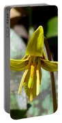 Trout Lily Portable Battery Charger