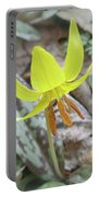 Trout Lily Wildflower - Erythronium Americanum Portable Battery Charger