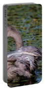 Trumpeter Swan Foot Wave Portable Battery Charger