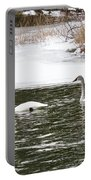 Trumpter Swans Panorama Portable Battery Charger