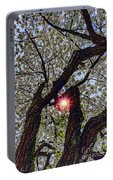 Trunk Of A Cherry Tree Blooming With White Flowers Portable Battery Charger