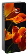 Tulip 38 Portable Battery Charger