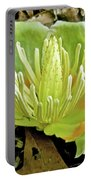 Tulip Poplar Flower - Liriodendron Tulipifera Portable Battery Charger
