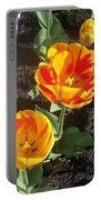 Tulip Red And Orange Portable Battery Charger
