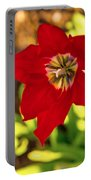 Tulip Star Portable Battery Charger
