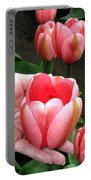 Tulip Town 15 Portable Battery Charger