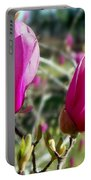 Tulip Tree Blossoms Portable Battery Charger