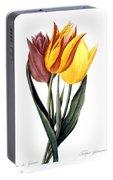 Tulip (tulipa Gesneriana) Portable Battery Charger