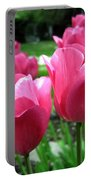 Tulipfest 3 Portable Battery Charger