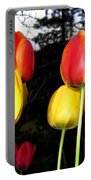Tulipfest 9 Portable Battery Charger