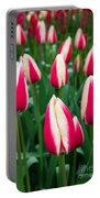 Tulips 7 Portable Battery Charger