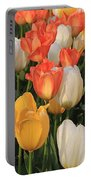 Tulips Ablaze With Color Portable Battery Charger