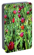 Tulips Blooming Portable Battery Charger