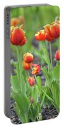 Tulips In The Springtime Portable Battery Charger