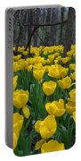 Tulips In The Woods Portable Battery Charger