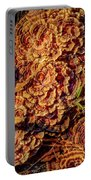 Turkey Tail Mushrooms  Portable Battery Charger