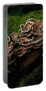 Turkey Tail Portable Battery Charger