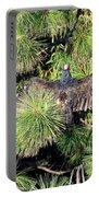 Turkey Vulture Spread Two Portable Battery Charger