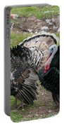 Turkeys In The Yard At Laguna Guerrero Portable Battery Charger