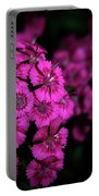 Turkish Carnation 5140 H_2 Portable Battery Charger