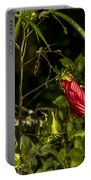 Turk's Cap 1 Portable Battery Charger