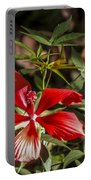 Turk's Cap 2 Portable Battery Charger